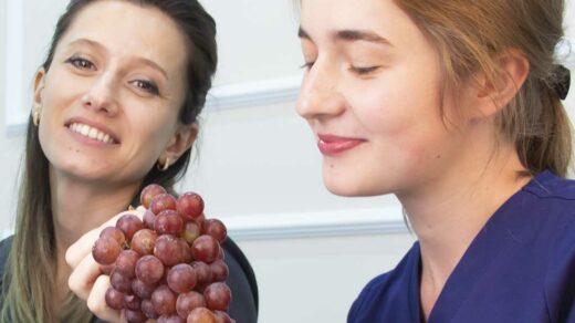 Экстракт косточек винограда защитит зубы от кариеса